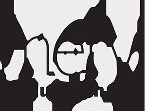 logo-Nilstar-hyaluronan