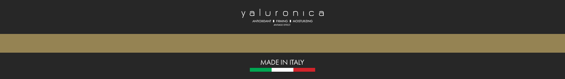 logo-footer-made-in-italy_gr copy
